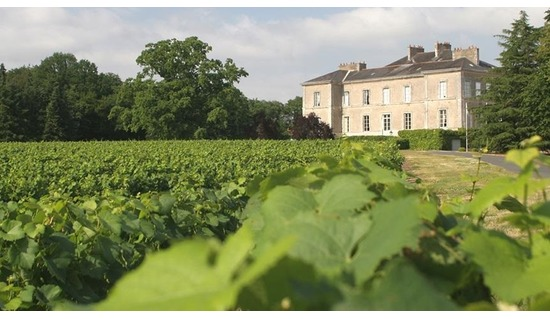 Winemaker Dinner, The Loire, with Pierre Jean Sauvion
