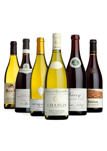 The Burgundy Selection